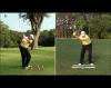 Shaping Golf Shots around Trees